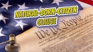 Natural born citizen clause (USA Constitution)⚖️📜🍔⚾🙈👺🤡😬✅