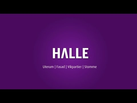 Halle Konsument-Industri
