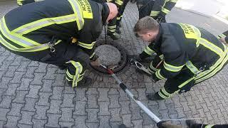 В Германии спасатели провели успешную операцию по спасению крысы