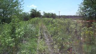 preview picture of video 'Viaje en Zorra entre Plomer y La Choza 9-nov-08'