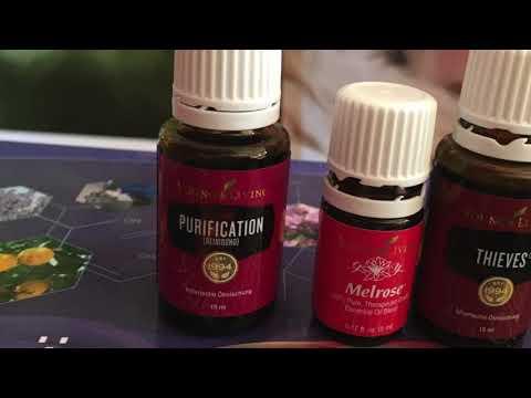 Insektenschutz Spray - Wie können Sie ganz ohne Nervengift! lästige Insekten von sich fern halten?