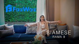 Video of Siamese Rama 9