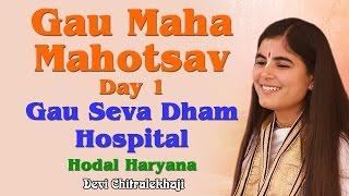 Gau Maha Mahotsav Day 1 Gau Seva Dham Hospital Hodal Haryana Devi Chitralekhaji