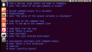 Bash Scripting Basics Part 1