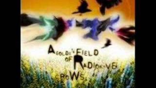 77s - A Golden Field of Radioactive Crows - There Forever