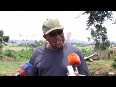 ENKAAYANA KU TTAKA: Waliwo abagugulana e Ntebbe