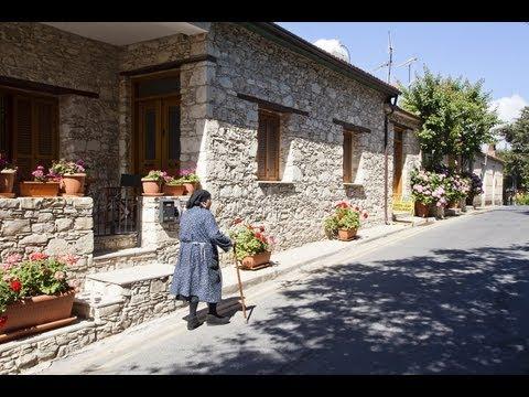 סנוניות הערים מצאו בית חם בקפריסין