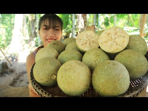 Yummy cooking wood apple fruit recipe - Cooking skill