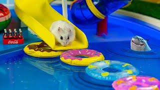 🐹MEGA HAMSTER RACE 🐹 maze with Traps hamster🐹 Minecraft Maze😱[OBSTACLE COURSE]😱
