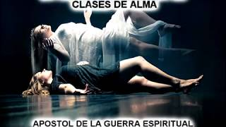Las Tres Clases De Alma Rabino Raul Vargas