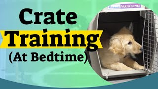 How to Crate Train A Puppy At Night - Crate training for puppies