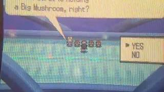 Pokemon Black and White - Where to go after beating the game? Part 1