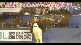 つば九郎、TV中継のカメラさんを困らせる笑