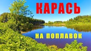 Карась на озере в мае