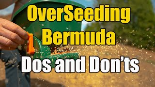 Overseeding Bermuda with Rye for Fall and Winter