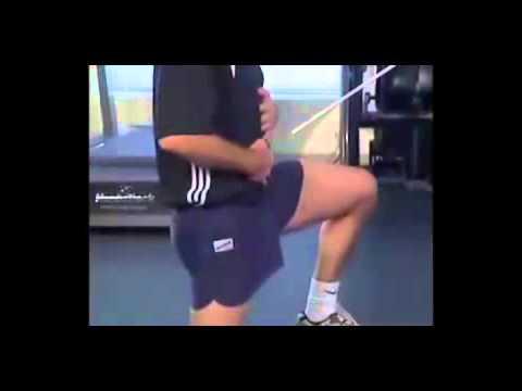 Sur le bodybuilding vikipediya
