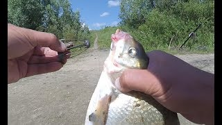Рыбалка на оке под серпуховым донку