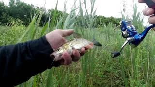 Рыбалка река волчья