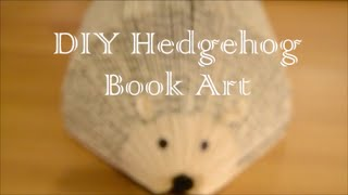 DIY Easy Hedgehog Book Art