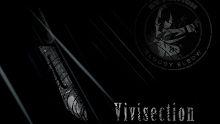 The MMA Vivisection - Bellator 172: Fedor vs. Mitrione picks, odds, & analysis