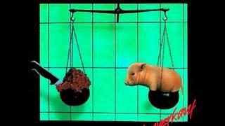 Toxoplasma - Du & Ich