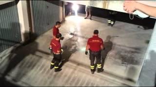preview picture of video 'Cattura di una vipera aspis a Vallonica di Genga'