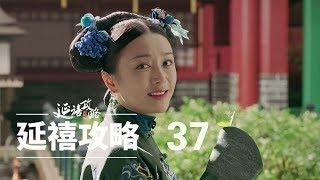 延禧攻略 37   Story of Yanxi Palace 37(秦岚、聂远、佘诗曼、吴谨言等主演)