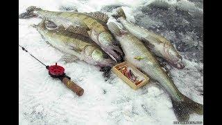 Зимняя рыбалка на реке кама