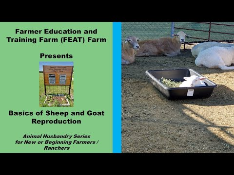 , title : 'Basics of Sheep and Goat Reproduction 2