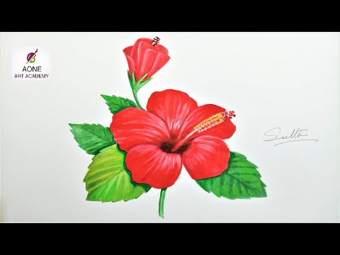 Hibiscus Sketching Using Pencil Colors How To Draw Hibiscus Flower