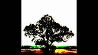"""Sam Roberts Band - """"No Sleep"""" - We Were Born In a Flame"""