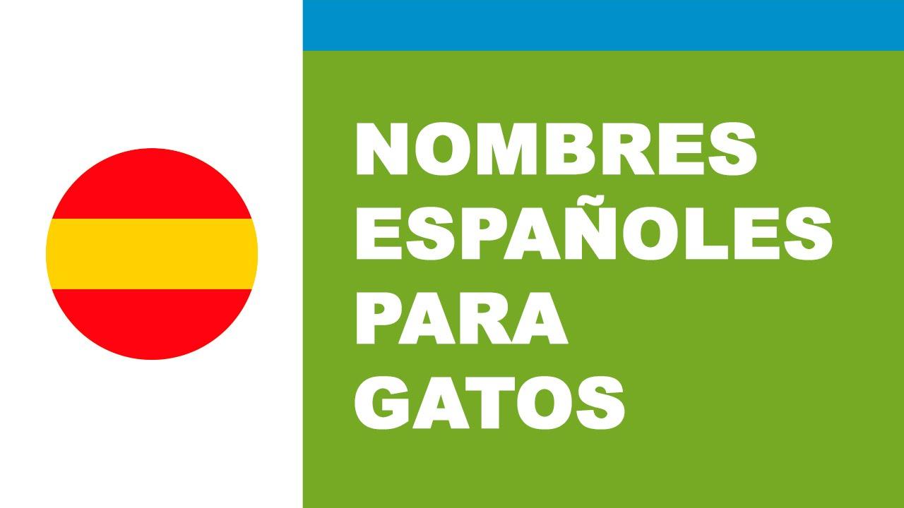 Nombres españoles para gatos