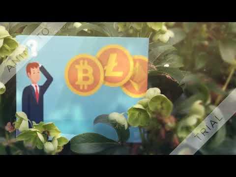 Btc rinkos valiutos