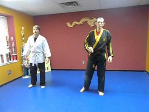 KENPO for BEGINNERS (Lesson 1) free karate
