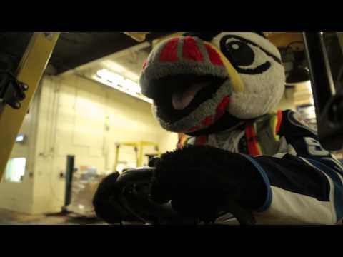 Buddy the Puffin and Pepsi Next