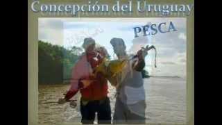 preview picture of video 'Pesca - Concepción del Uruguay - Entre Ríos - Argentina'