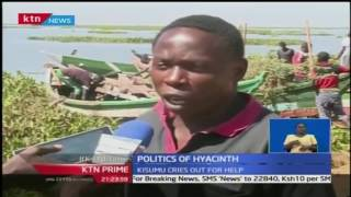 KTN Prime: Water hyacinth issue could tilt vote in Kisumu County
