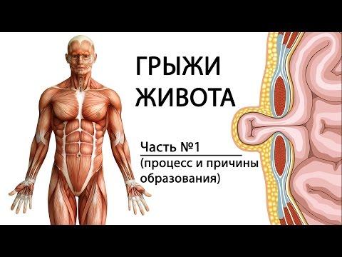 Какие витамины нужны для потенции