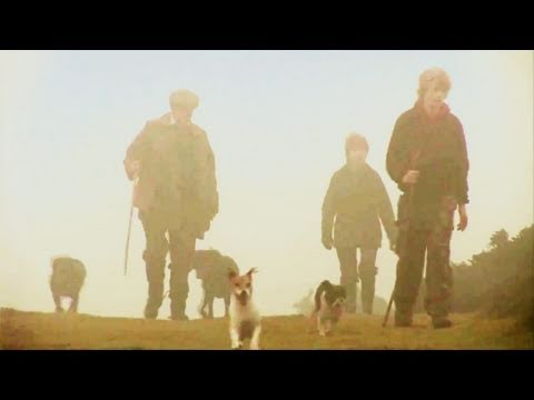 Fieldsports Britain – Rabbit hounds, pheasant cartridges and a Hampshire shoot