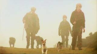 Fieldsports Britain – Rabbit hounds, pheasant cartridges and a Hampshire shoot