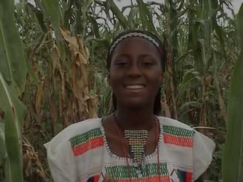 WAKAR YAN AREWA (Hausa Songs / Hausa Films)