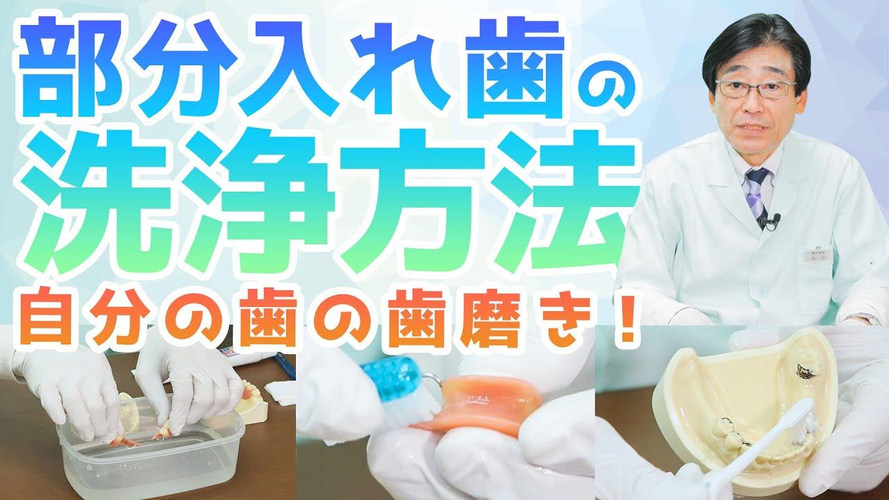 【入れ歯・洗浄方法】部分入れ歯の洗浄と残っている歯の歯磨き!義歯も大切だけど、それ以上に大切なのは残っている自分の歯です!