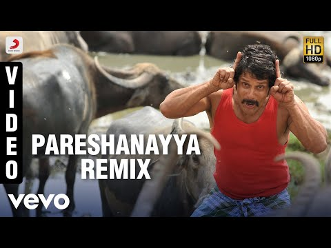 Pareshanayya (Remix)