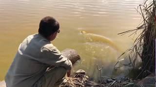 Рыбалка озеро чудесное