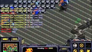 스타 유즈맵 뮤탈블러드 나만 개꿀잼 ㅋㅋㅋㅋ(starcraft Brood War Use Map Setting Mutal Blood 20000kill)