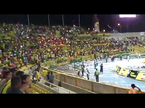 """REBELION AURIVERDE     ( COLOMBIA - CARTAGENA )"" Barra: Rebelión Auriverde Norte • Club: Real Cartagena"