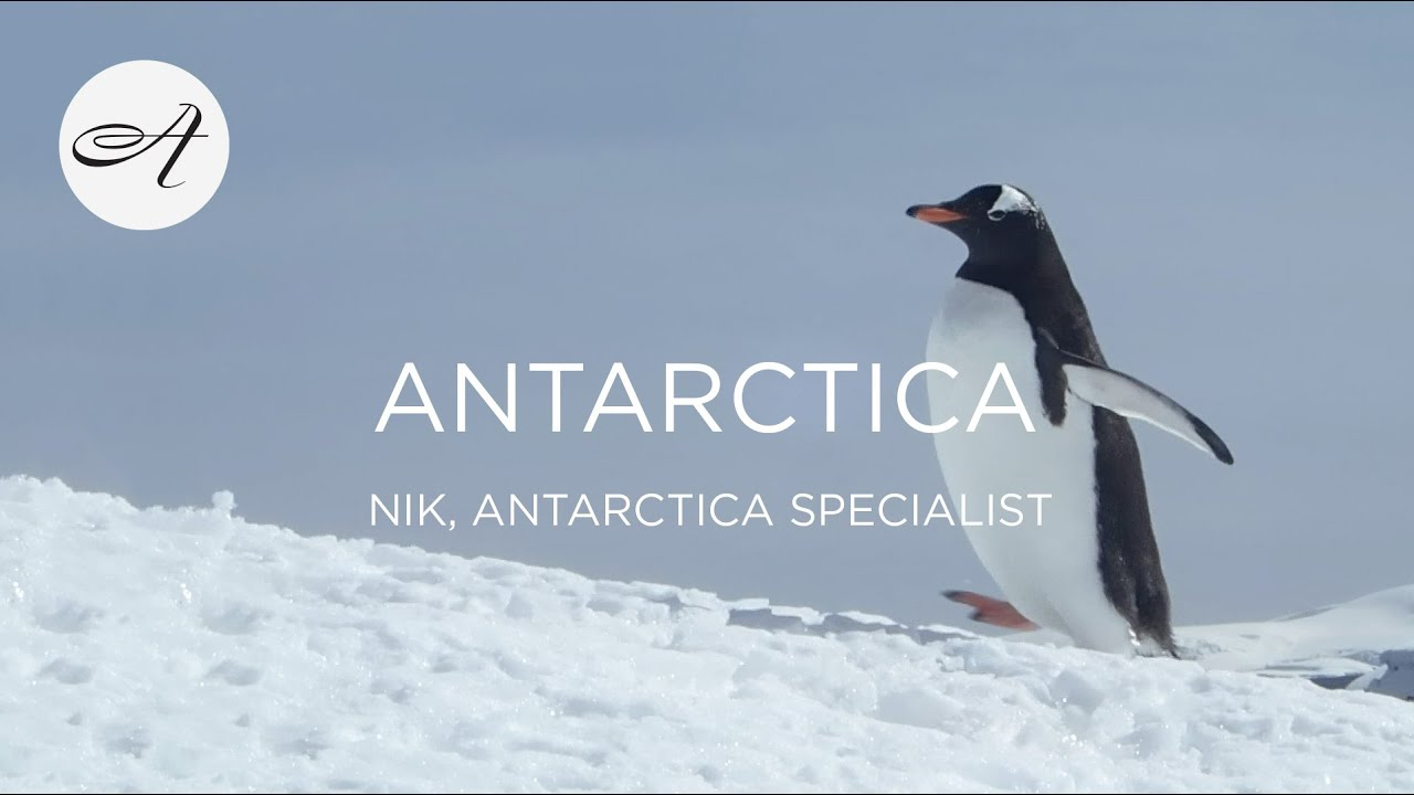 My travels in Antarctica, 2017