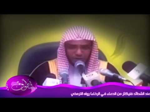 الشيخ المغامسي : أدركت شخصاً يقوم من غيبوبته فيصلي