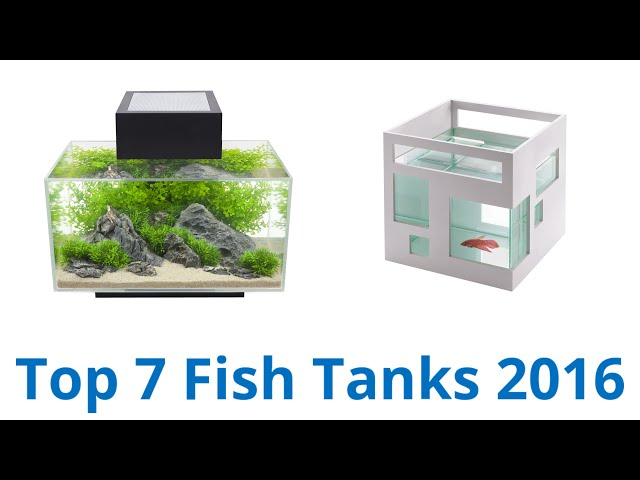 7 Best Fish Tanks 2016