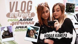 VLOG: Новая камера, вечеринка, очень плохие девчонки, лечим котов